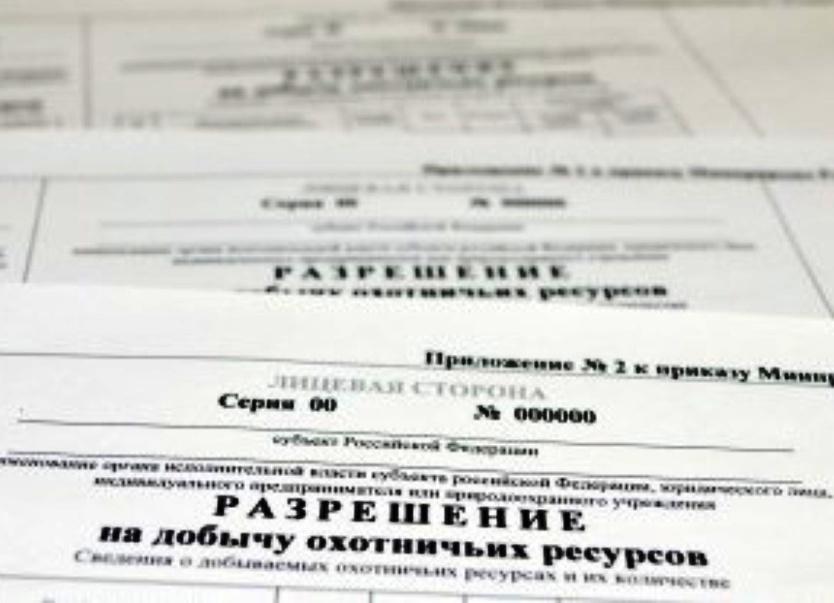 Закон рф о регистрации иностранных граждан на территории рф 2019